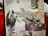 tablica magnetyczna zioła